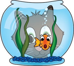 kitty_watching_goldfish_in_fishbowl_0515-0910-1217-0517_SMU